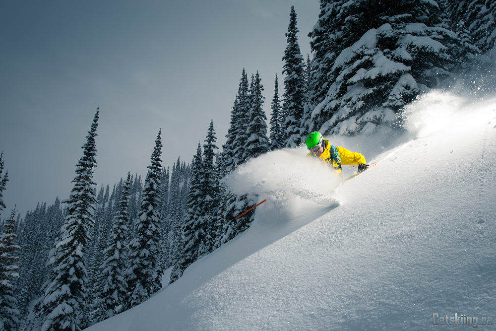 White Grizzly Catskiing - Todd Avison
